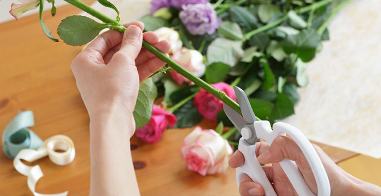 07 Cuidados básicos com flores de corte